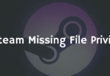 Steam Missing File Privileges Error