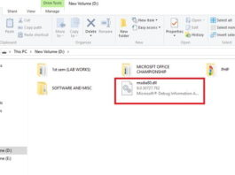 What is msdia80.dll and Should You Delete it